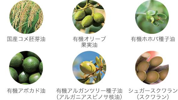 国産コメ胚芽油、シュガースクワランなどの植物オイル